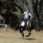 Full Gallop Through the Bush
