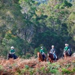 Riding in the Margaret River Forest