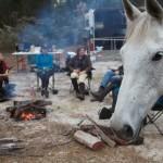 Bush Ride Camp Fire