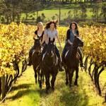 Fun Riding in the Vineyard