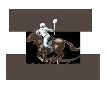 Jesters Flat logo